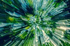 抽象的软性色光通过树发光 免版税库存照片