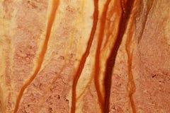 抽象石绘画 库存图片