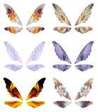 抽象神仙的翼 库存照片