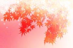 抽象秋叶冬天场面,红槭剪影阴影与雪剥落的在红色背景 免版税库存照片