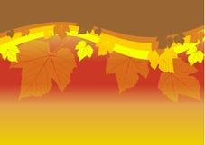 抽象秋天墙纸 库存图片