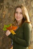 抽象秋天明亮的颜色下跌叶子好的模式红色半