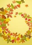 抽象秋天背景。 免版税图库摄影