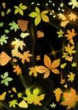 抽象秋天背景。 库存图片