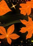 抽象秋天背景。 免版税库存图片