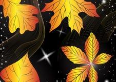 抽象秋天背景。 免版税库存照片