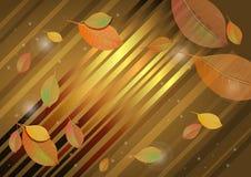 抽象秋天背景上色叶子充满活力 图库摄影