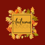 抽象秋天背景五颜六色的框架叶子叶子 花卉横幅设计 免版税库存图片