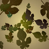 抽象秋天背景五颜六色的框架叶子叶子 库存图片