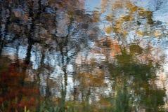 抽象秋天背景:另外明亮的颜色森林在与波纹的水中反射了表面上 库存图片