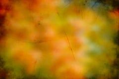 抽象秋天背景 库存图片