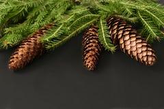 抽象空白背景圣诞节黑暗的装饰设计模式红色的星形 与冷杉球果的圣诞树 库存图片