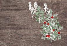 抽象空白背景圣诞节黑暗的装饰设计模式红色的星形 圣诞节森林,从灰色和绿草的一棵树与装饰品由自然红色花楸浆果做成 库存照片