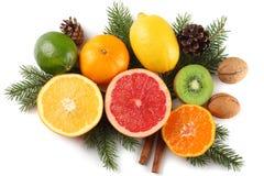 抽象空白背景圣诞节黑暗的装饰设计模式红色的星形 与锥体混合切的柠檬、绿色石灰、桔子、普通话、猕猴桃和葡萄柚和被隔绝的杉树 免版税库存图片