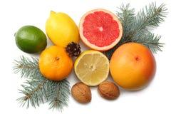 抽象空白背景圣诞节黑暗的装饰设计模式红色的星形 与锥体混合切的柠檬、绿色石灰、桔子、普通话、猕猴桃和葡萄柚和被隔绝的杉树 免版税库存照片
