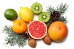 抽象空白背景圣诞节黑暗的装饰设计模式红色的星形 与锥体混合切的柠檬、绿色石灰、桔子、普通话、猕猴桃和葡萄柚和被隔绝的杉树 免版税图库摄影