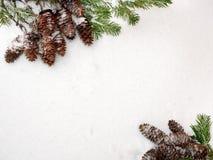 抽象空白背景圣诞节黑暗的装饰设计模式红色的星形 云杉的分支和锥体,在每个o对面 免版税库存照片
