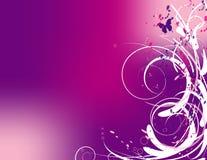 抽象粉红色漩涡 免版税库存照片