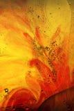 抽象红色黄色 库存照片