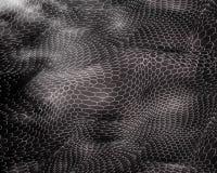 抽象线,六角形在黑白颜色的样式3D波浪 空白,3D风景模板,数字技术,未来主义 皇族释放例证