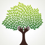 抽象结构树喜欢现有量分行 库存图片