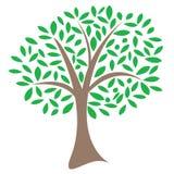 抽象结构树 免版税库存照片