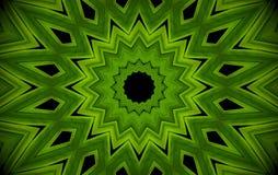 抽象绿叶背景,与万花筒effe的棕榈叶 库存例证
