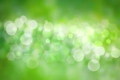 抽象绿灯和白色夏天bokeh背景 蠢材 向量例证
