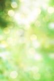 抽象绿色春天本质背景 库存图片