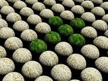 抽象绿色箭头 库存照片