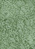 抽象绿色金属自然纸纹理 免版税库存图片