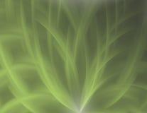 抽象绿色 图库摄影