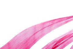抽象羽毛红色纹理 图库摄影