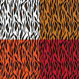 抽象老虎皮肤模式 图库摄影