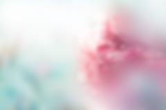 抽象背景、软性和迷离概念的花淡色迷离 库存照片