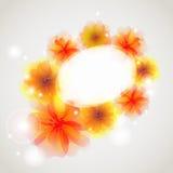 抽象背景五颜六色的花 免版税库存图片