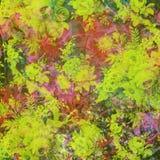 抽象背景五颜六色花卉 免版税库存照片
