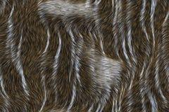 抽象背景关闭毛皮纹理 库存图片