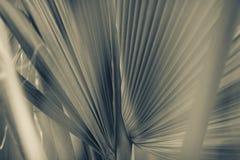 抽象背景减速火箭的样式 图库摄影