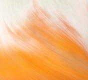 抽象背景分数维图象柔和的淡色彩 免版税图库摄影