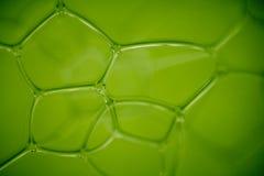 抽象背景利用仿生学的绿色 库存图片