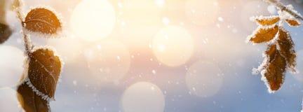 抽象背景圣诞节 免版税库存图片
