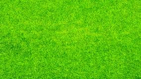 抽象背景城市草绿色草坪公园纹理视图 库存图片