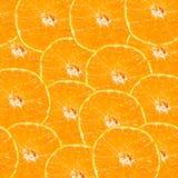 抽象背景用橙色切片柑橘水果。 免版税库存照片