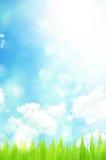 抽象背景绿灯反射春天 免版税库存照片