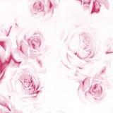 抽象背景美丽的纸玫瑰 免版税库存照片