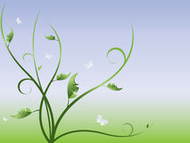 抽象背景花卉向量 免版税库存图片