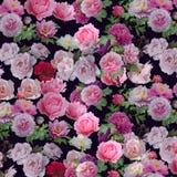 抽象背景花卉模式 库存图片