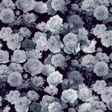 抽象背景花卉模式 免版税库存图片