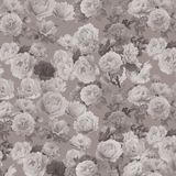 抽象背景花卉模式 图库摄影